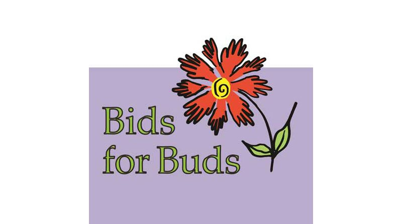 Auction-banner-bids-for-buds-r3