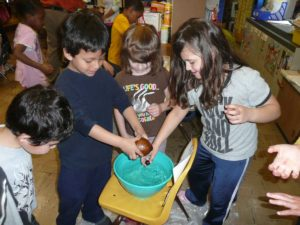 Students drop seeds into water to see which will float.
