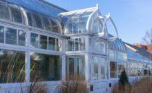 Oak Park Conservatory Winter 2020