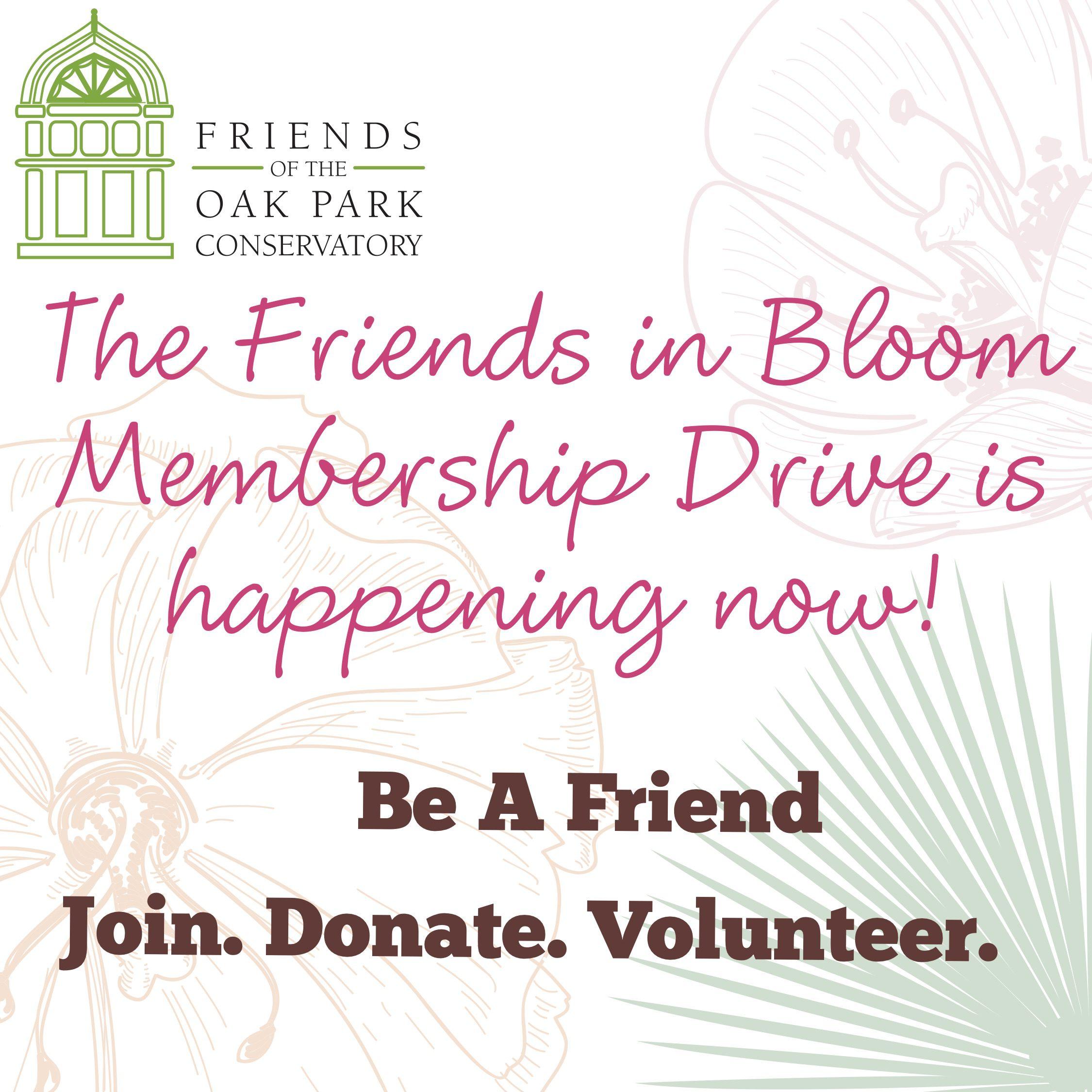 Membership Drive 2020